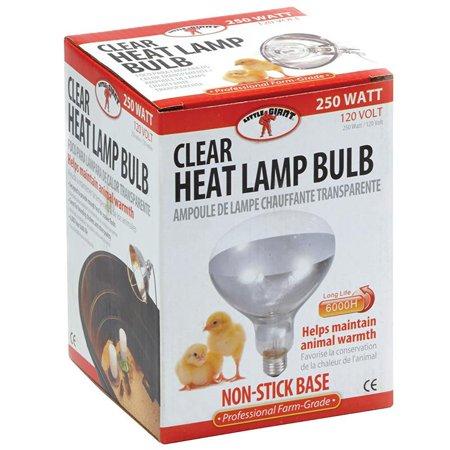 Little Giant Heat Lamp Bulb Red Clear Woodard Mercantile