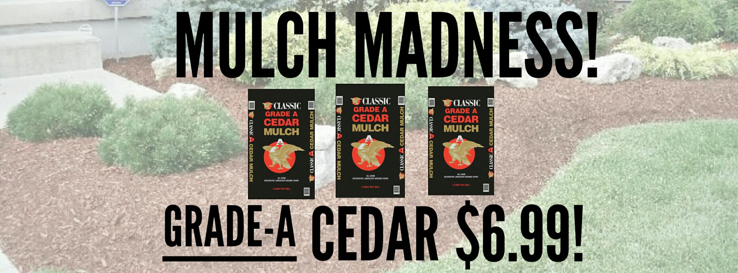 mulch madness cover 2020