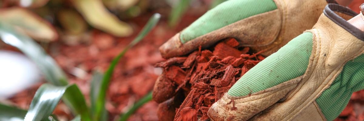 cedar mulch for sale wichita kansas