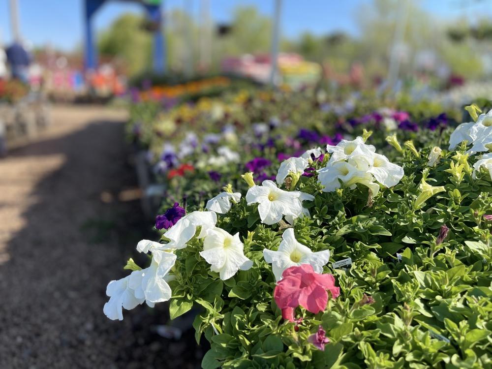 gardening store wichita