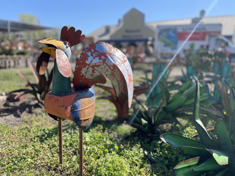 gardening supplies wichita