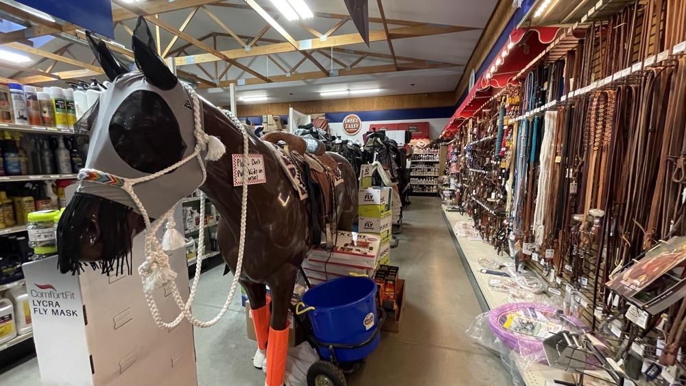 horse equestrian supplies