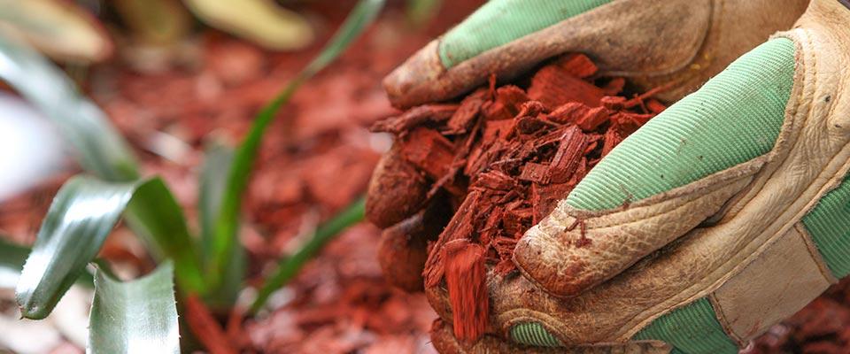 Buy Cedar Mulch in Andover – #1 Source For Mulch